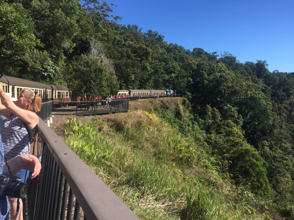 We stopped at one of the stations just before reaching Kuranda to take a look at our surroundings
