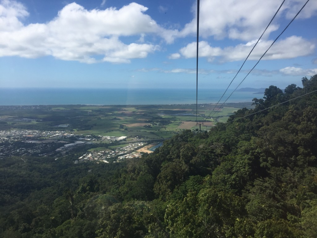 Continuing down the last couple of km's of the gondola ride we start to see the farmland and suburbs north of Cairns and the ocean again